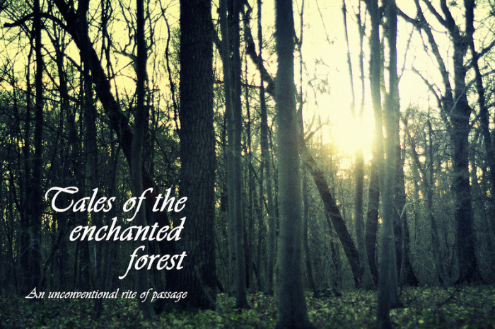 Tales of the Enchanted Forest, Pt. I