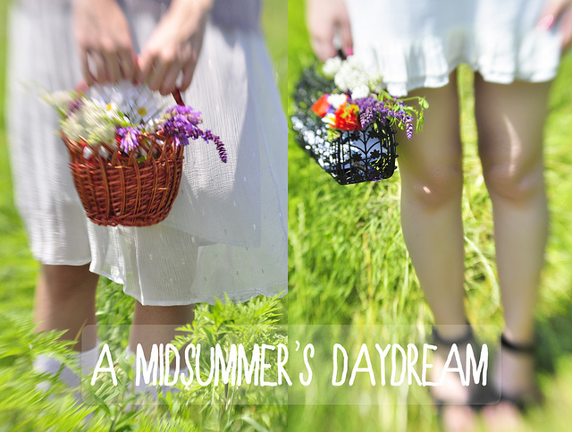 A Midsummer's Daydream