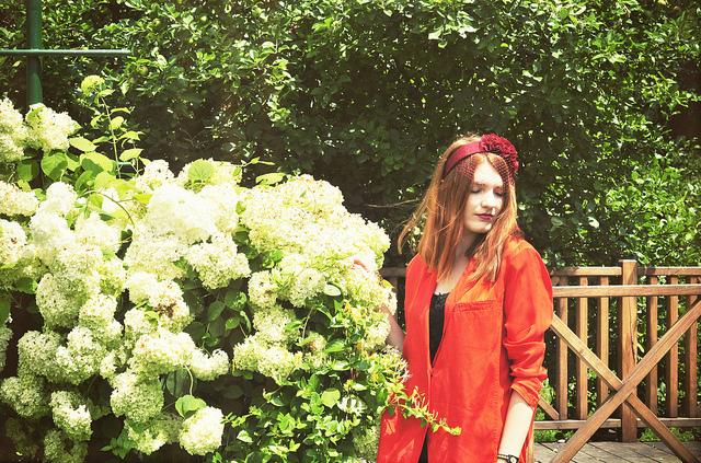Transylvania's Eden Garden