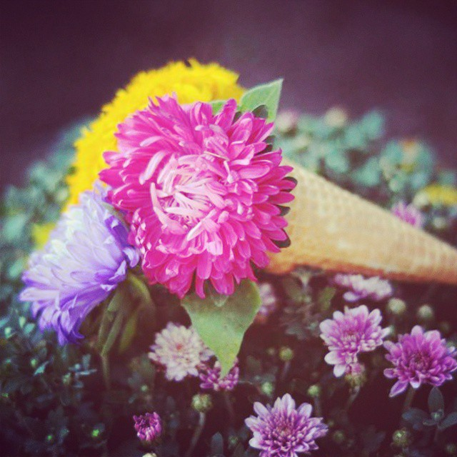 Ice cream cones...i mean flower cones. http://thehearabouts.com