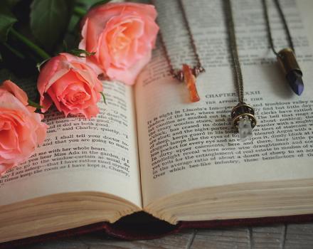 April Favorites: Accessories, Lingerie & Books